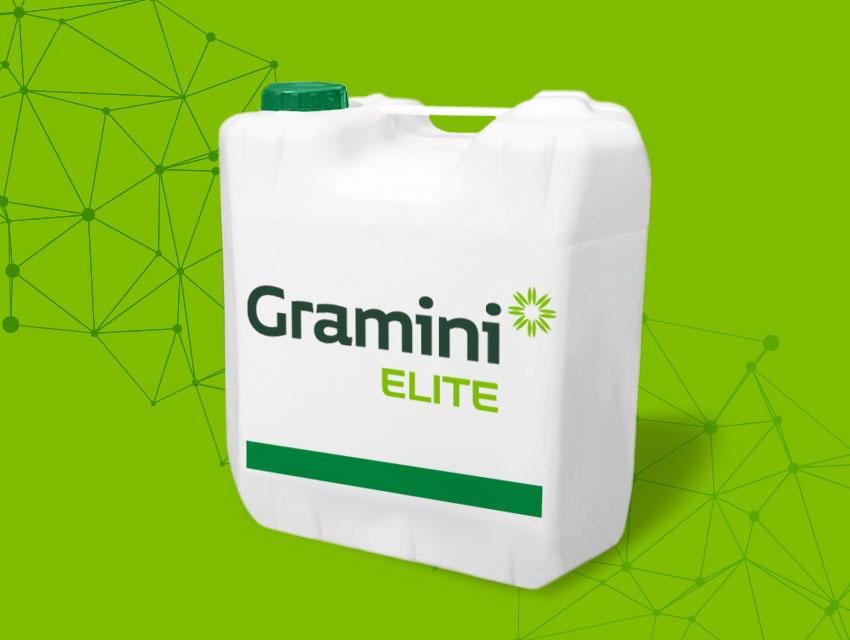 Gramini Elite
