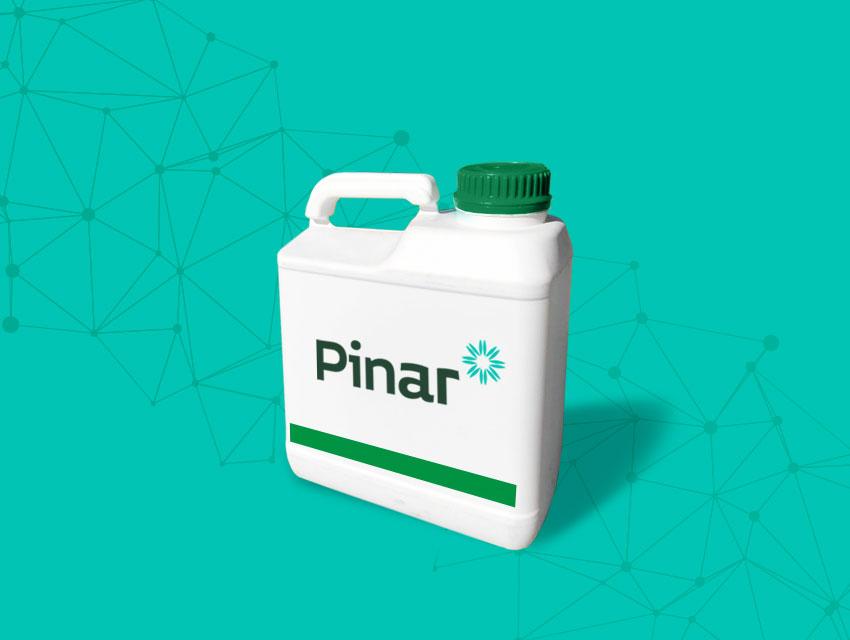 Pinar