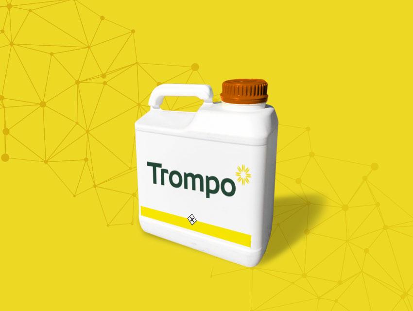 Trompo