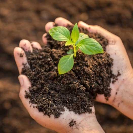 La tierra, el recurso natural
